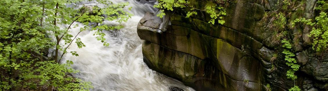 Flüsse im Harz